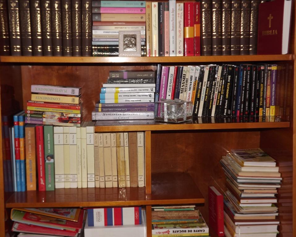 biblioteca17