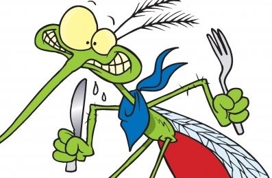 țânțari