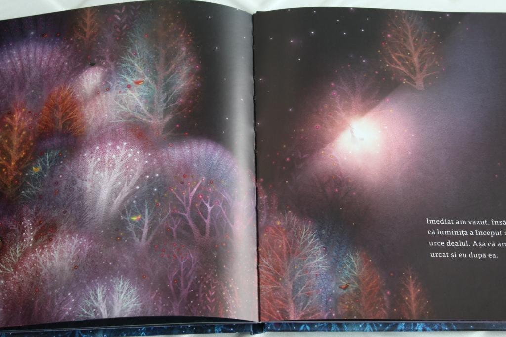 omul făcut din stele interior carte