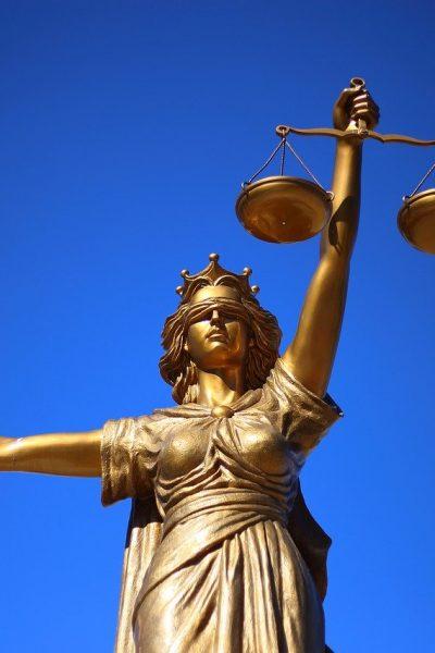 ramurile dreptului